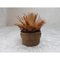 Kaktus 5 x 5 cm