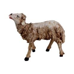 Schaf oben schauend 12 cm