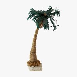 Palme 27 cm