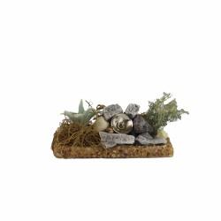 Strahler mit Kaktus und Steinen
