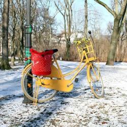Fahrradtasche, Einzeltasche Lunares rot