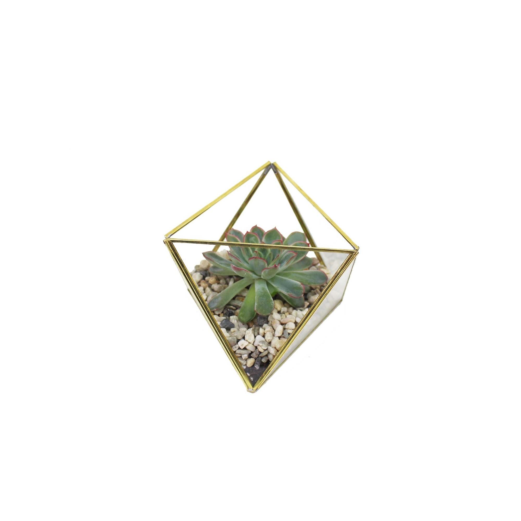 geometrisches terrarium aus glas dreiecke mini glas. Black Bedroom Furniture Sets. Home Design Ideas