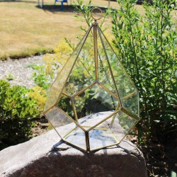 Geometrisches Terrarium aus Glas, Pentagonale, Vase für Sukkulenten
