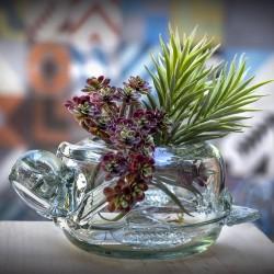 Blumenschale Schildkröte   Mundgeblasenes Glas