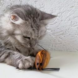 Mäusespiel für Katzen