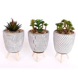 3er Set Pflanzen mit Topf