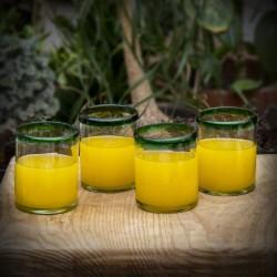 Gläser 4er Set, Wasser- oder Whiskeyglas grün Rand