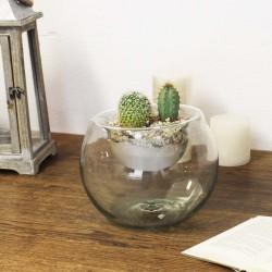 Blumenvase Terrarium efekt