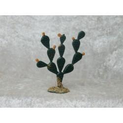 Kaktus 6 cm