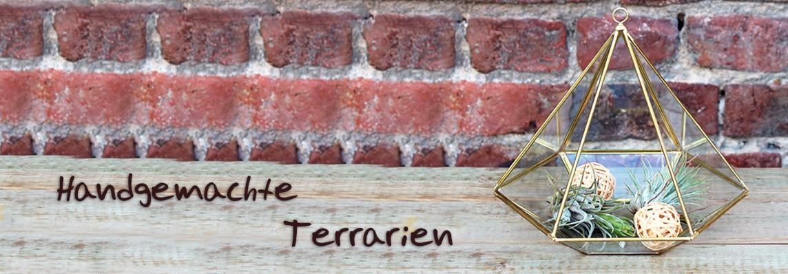 Handgemachte Terrarien